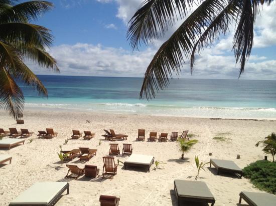 Photo 10 Akiin Tulum Beach Club