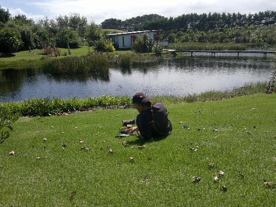 Wai Hou Oma Lodge: Walking Taharoa Lake