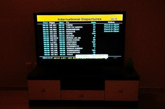 Global Guest House: TV channel with live feed of departures board from airport