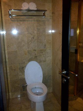 โรงแรมจาร์กาตา แอร์พอร์ท: bathroom