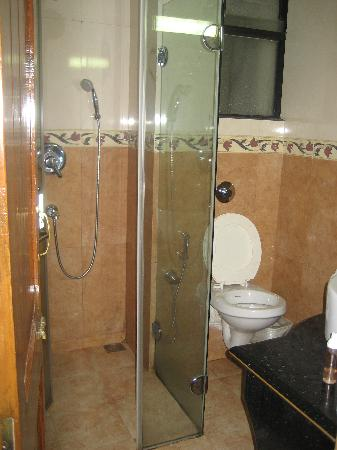 Hotel Goan Heritage: Bathroom