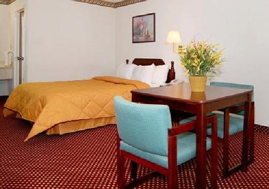 Econo Lodge Inn & Suites Southeast : Guest room with additional amenities