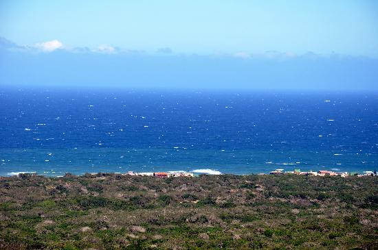 Seaview Lion Park: View from the lion park