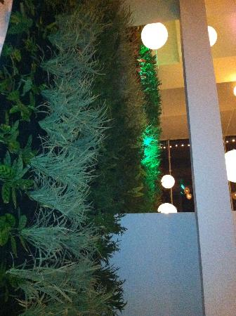Tantalo Hotel / Kitchen / Roofbar: Vertical indoor garden