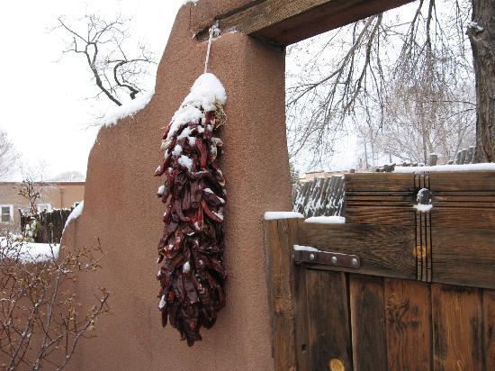 إل باراديرو بيد آند بريكفاست إن: Garden gate in winter