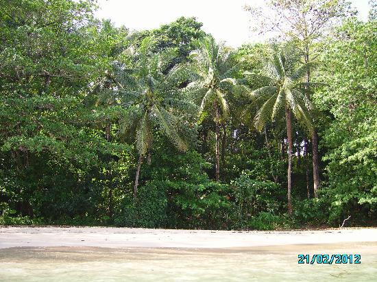 Beyond Resort Khaolak: Non sembra un'isola deserta?