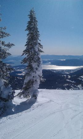 Schweitzer Mountain Resort Lodging: View from the top of the Great Express chair