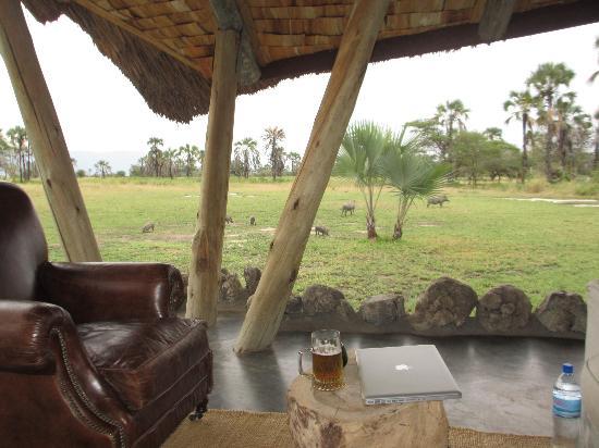 Chem Chem Safari Lodge : Warzenschweine vor der Lounge