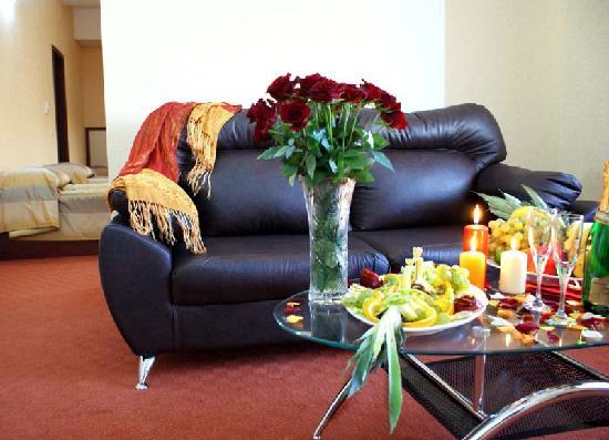 Nork Residence Hotel : Room Hall