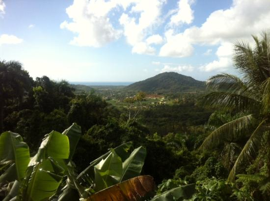 La Paloma Guest House: View from property