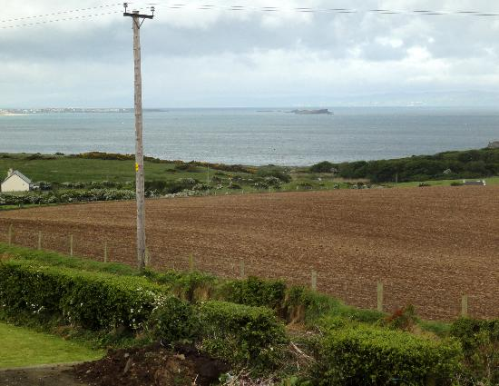 Carnside Guest House: View from the room