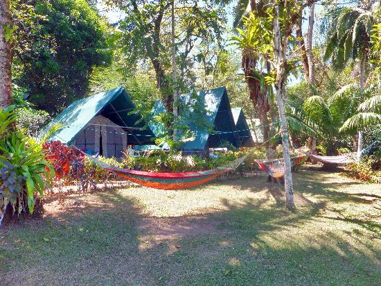 Corcovado Adventures Tent Camp: a view of our tents