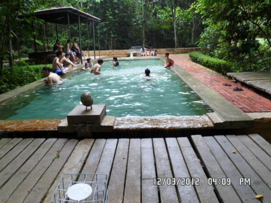 Steamed bread picture of sekeping serendah retreat - Homestay in kuala lumpur with swimming pool ...