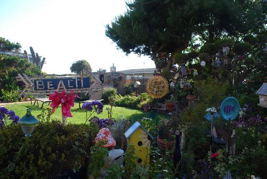 Seaside Motel: The beautiful garden