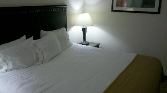 Holiday Inn Express Venice/Sarasota : Bed