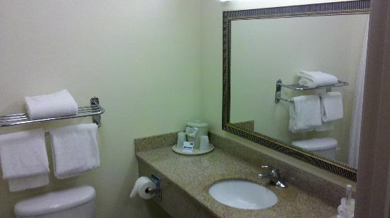 Holiday Inn Express Venice/Sarasota : Bathroom