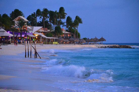 Manchebo Beach: Along the Shore...