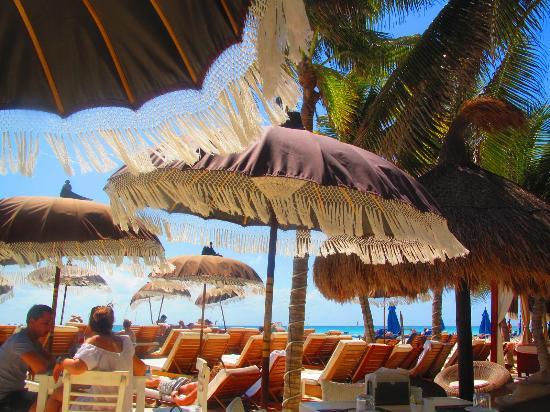 El Taj Oceanfront & Beachside Condos Hotel : Beach area is small .