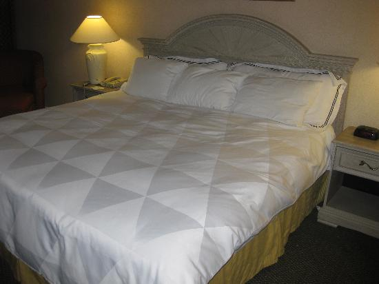DoubleTree by Hilton Hotel Flagstaff: Bed