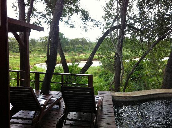 Lion Sands - Tinga Lodge: Legends - Deck of my room - #5