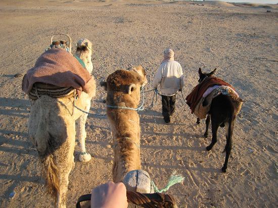 ゴビ砂漠の観光スポット6選|モンゴルのおすすめの料理は?