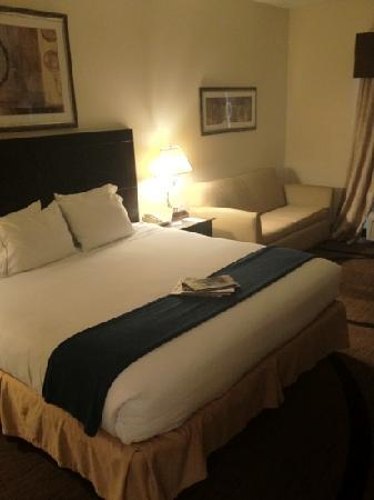 Wingfield Inn & Suites: bed and in room sofa