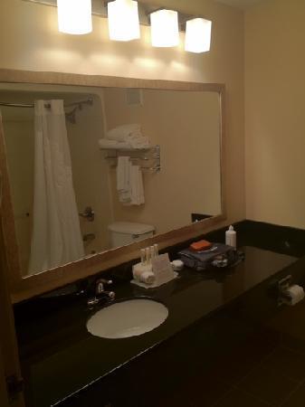 Wingfield Inn & Suites: bathroom
