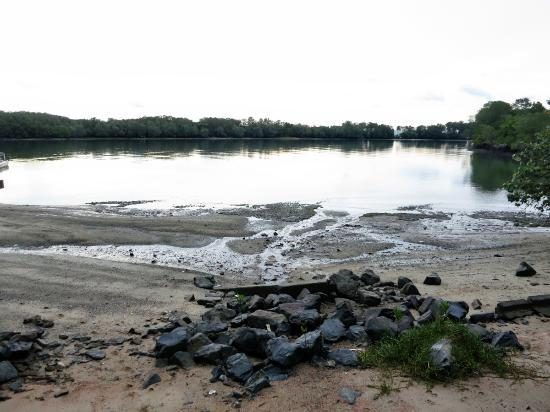 Celestial Resort Pulau Ubin: Their own beach