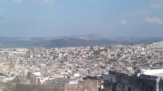Ryad Alya: View from the roof