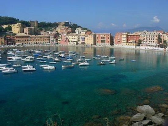 Sestri Levante, Italy: dall'alto