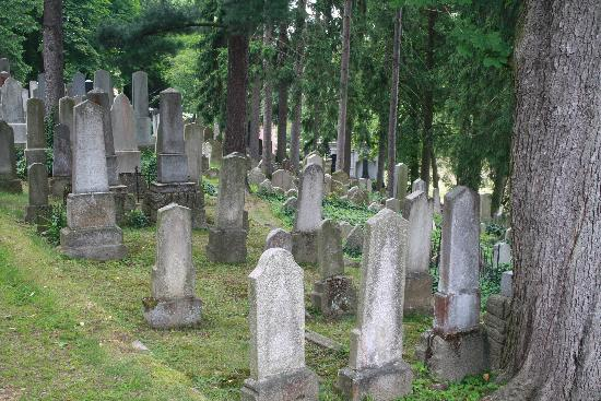 The Jewish Quarter and St Procopius' Basilica in Trebic: The Jewish Cemetery