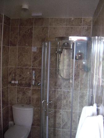 Chynoweth Lodge : Lovely shower/Toilet