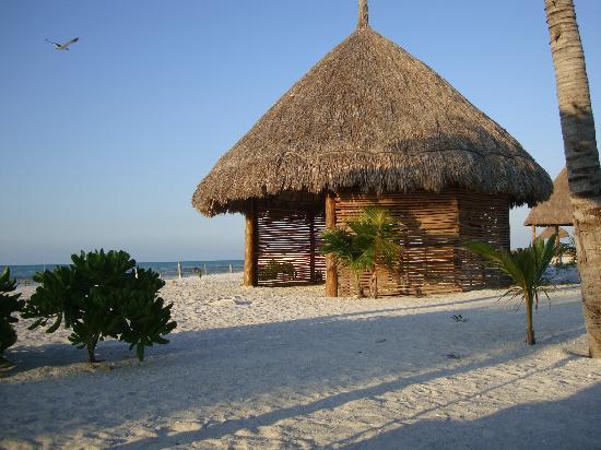 Holbox Hotel Mawimbi: in spiaggia