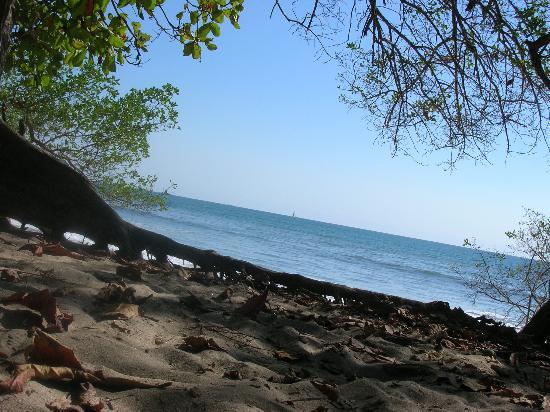 Hotel Meli Melo: plage à 200 m