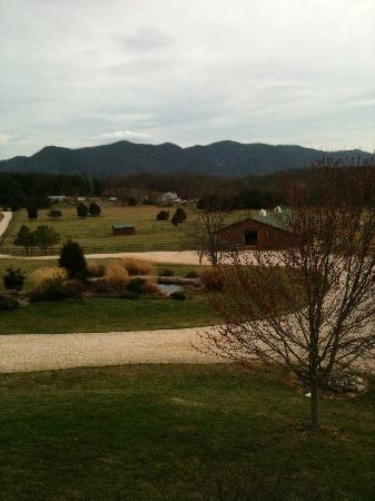 Fox Hill Bed & Breakfast Suites: View of the grounds