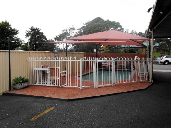 Coffs Harbour Pacific Palms Motel: Australian Safari Motel