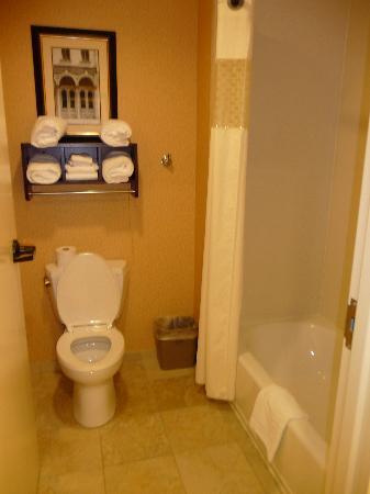 Hampton Inn & Suites Mobile/Downtown : King 1 Bedroom Suite - Bathroom