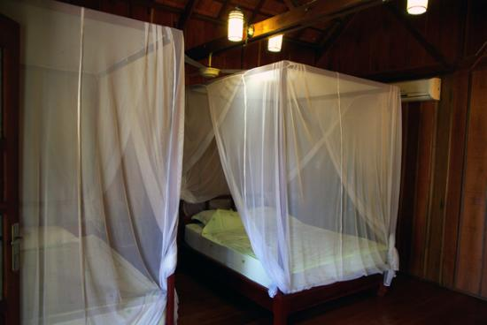 Nature-Mekong: une chambre