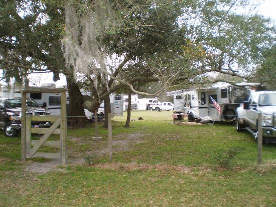 McCulley Farm: large camping areas