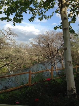 Schobels: Riverview from patio.