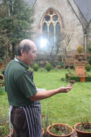 The Hollies: Feeding the birds