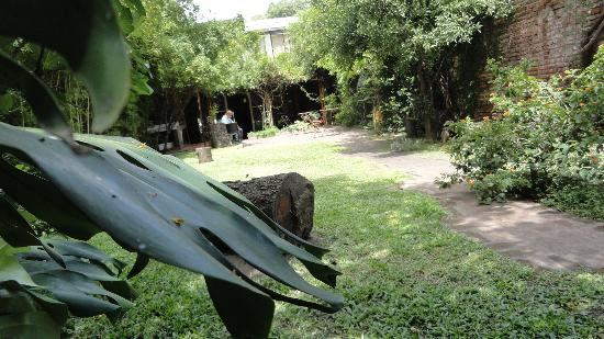 Jam Suites Boutique Hotel : garden
