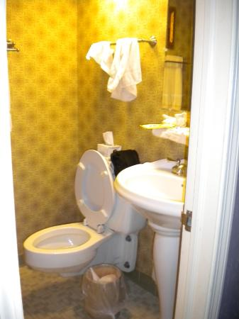 The Village Inns of Blowing Rock: Hillwinds Inn: Toilet & Sink