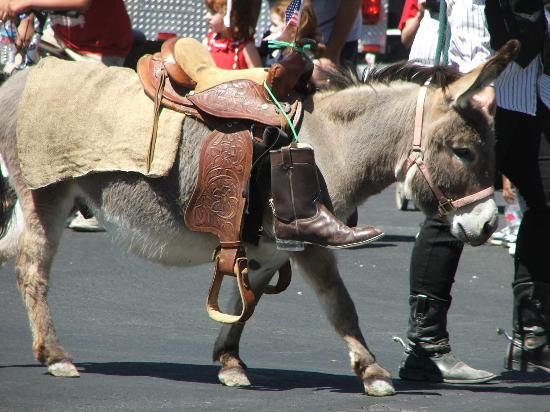 Prescott Frontier Days, World's Oldest Rodeo: Donkey