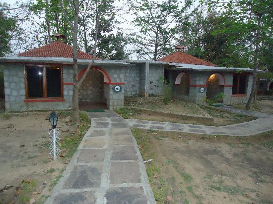 Mogli Resort : Cottages