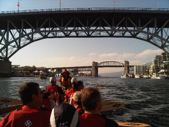 Takaya Tours : Paddling in the city canoe tour