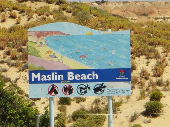 Maslin Beach All You Need To Know Before You Go With Photos Tripadvisor
