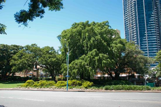 Centenary Place in Brisbane