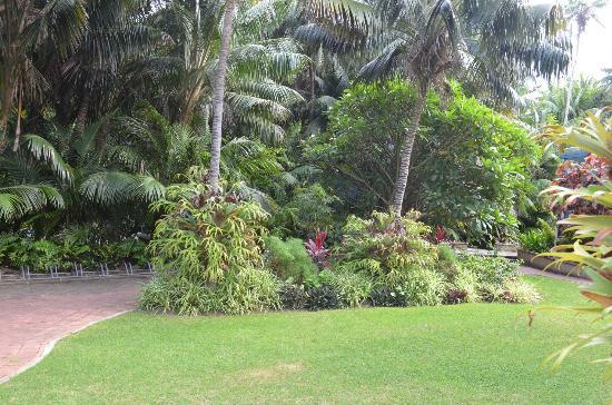 سومرست أبارتمنتس لورد هووي آيلاند: Gardens