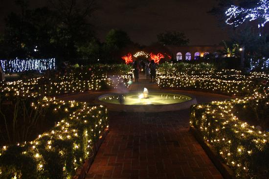New Orleans Botanical Gardens: At Christmas By The Fountain